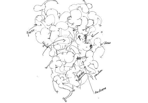Sketch of contemporary painter Jeremie Baldocchi (croquis-002.jpg)