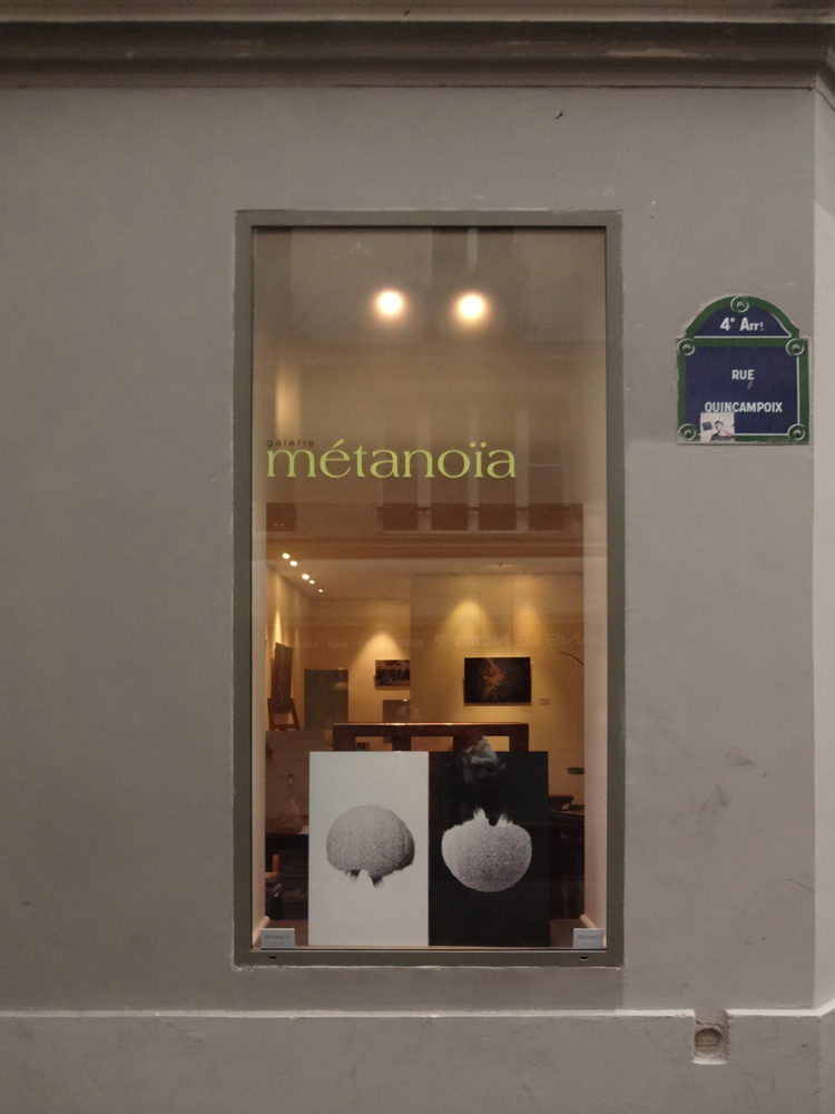 Group exhibition Gallery Métanoïa – Paris – France  from 2 to 13 November 2013